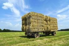 «Գյումրի սելեկցիոն կայան» ՓԲԸ-ում վաճառվում են ցորենի ծղոտի հակեր